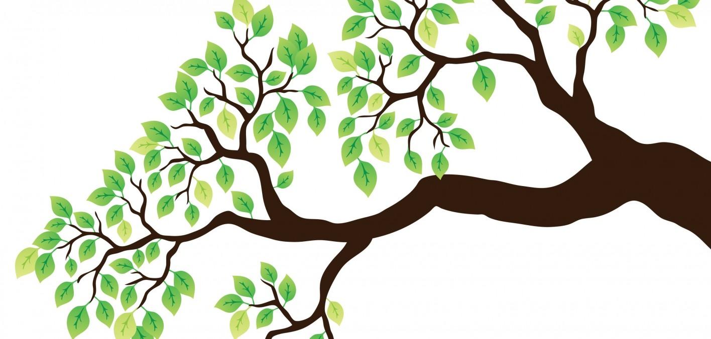Картинка дерево для детей с ветками и листьями