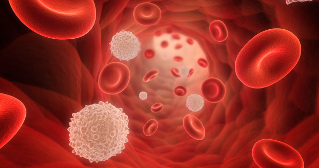 CAR-T Therapy Shows Promise for Chronic Lymphocytic Leukemia